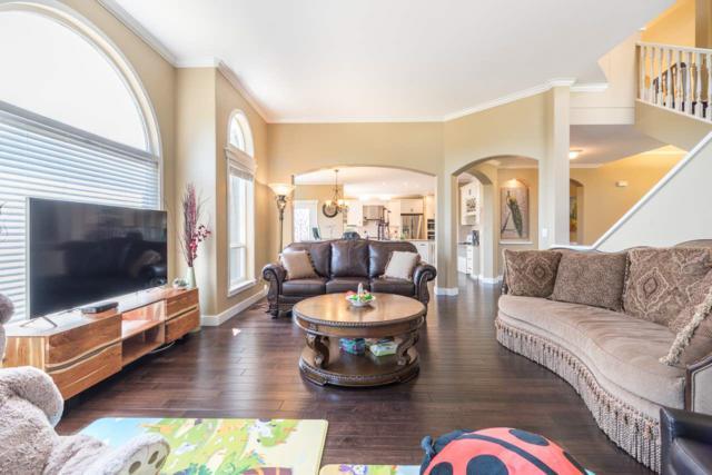 3362 155B Street, Surrey, BC V3S 0K5 (#R2290205) :: Homes Fraser Valley