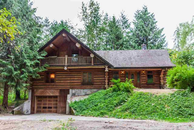 9823 N 287TH Street, Maple Ridge, BC V2W 1K9 (#R2293792) :: JO Homes | RE/MAX Blueprint Realty