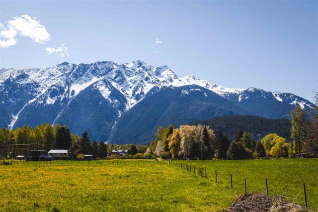 1531 Fraser Road, Pemberton, BC V0N 2L2 (#R2294416) :: West One Real Estate Team