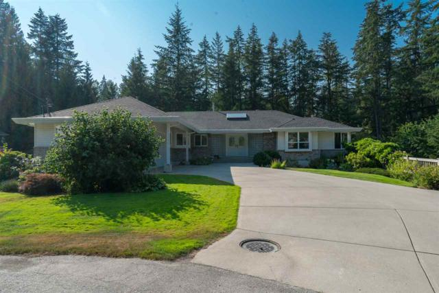 20023 Birch Place, Hope, BC V0X 1L2 (#R2294452) :: Vancouver House Finders