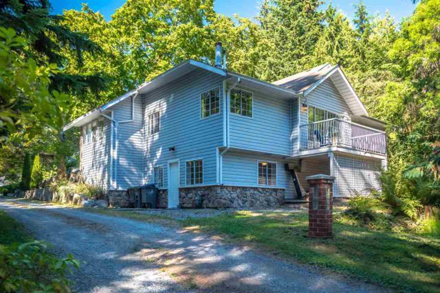 18933 86 Avenue, Surrey, BC V4N 6E3 (#R2294837) :: West One Real Estate Team