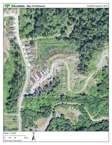 50556 Kingston Drive, Chilliwack, BC V4Z 0C2 (#R2295944) :: JO Homes   RE/MAX Blueprint Realty