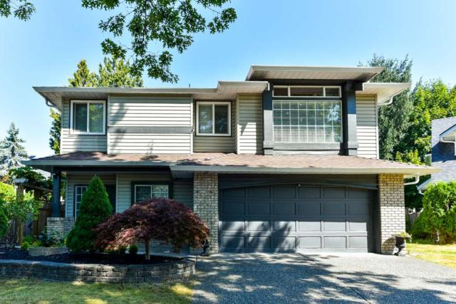 9669 206A Street, Langley, BC V1M 2H2 (#R2296230) :: West One Real Estate Team