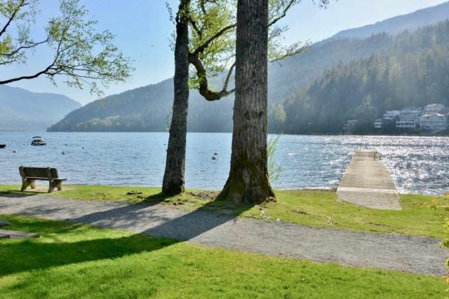 301 Second Avenue, Cultus Lake, BC V2R 1A1 (#R2296316) :: West One Real Estate Team