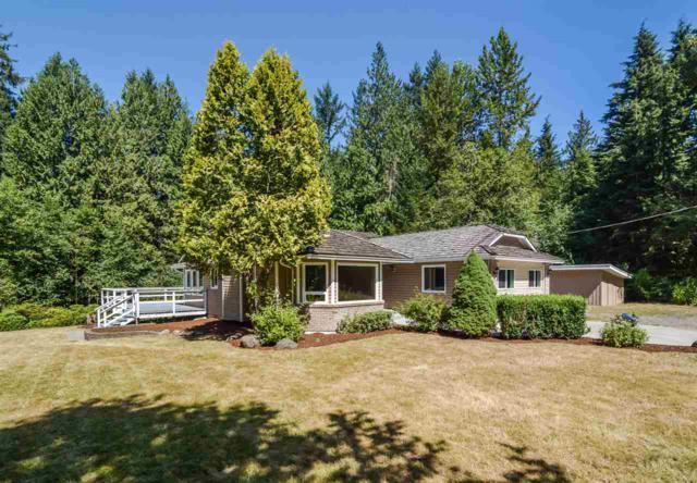 11839 284 Street, Maple Ridge, BC V2W 1L9 (#R2296466) :: JO Homes | RE/MAX Blueprint Realty