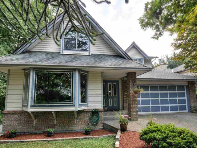12600 Laity Street, Maple Ridge, BC V2X 5B5 (#R2296946) :: West One Real Estate Team