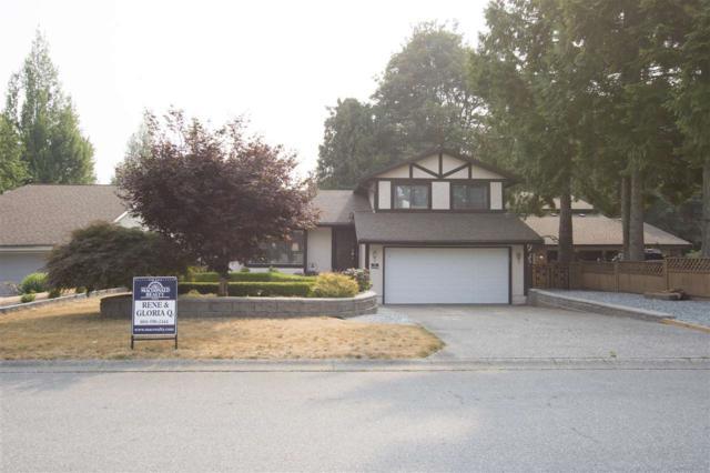 10220 158A Street, Surrey, BC V4N 2N5 (#R2297399) :: West One Real Estate Team