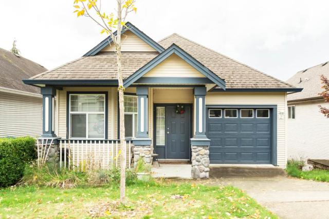 11505 228 Street, Maple Ridge, BC V2X 3P3 (#R2297685) :: West One Real Estate Team
