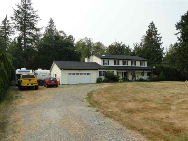 2341 180 Street, Surrey, BC V3S 9V2 (#R2297730) :: West One Real Estate Team