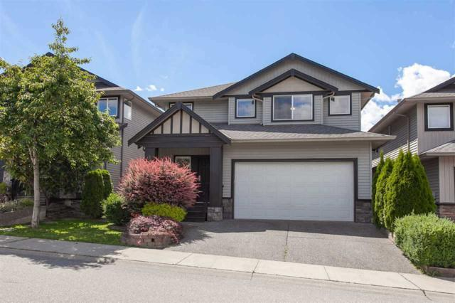 8959 216A Street, Langley, BC V1M 4C7 (#R2297938) :: West One Real Estate Team