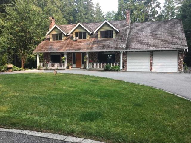 18973 86 Avenue, Surrey, BC V4N 6E3 (#R2299403) :: JO Homes | RE/MAX Blueprint Realty