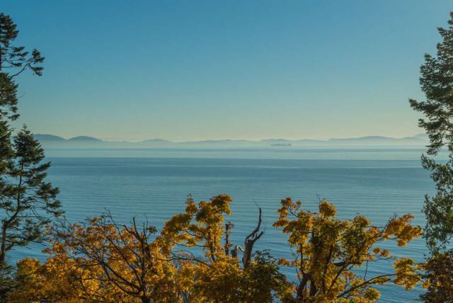 64 Tsawwassen Beach Road, Delta, BC V4M 4C6 (#R2300582) :: Vancouver House Finders