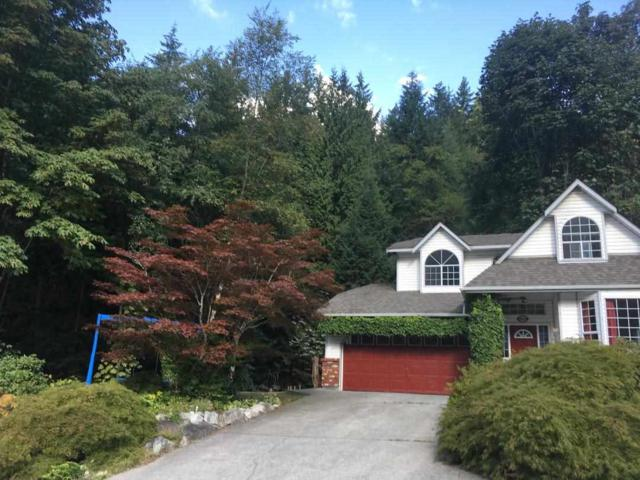 40056 Plateau Drive, Squamish, BC V0N 3G0 (#R2300810) :: Vancouver House Finders