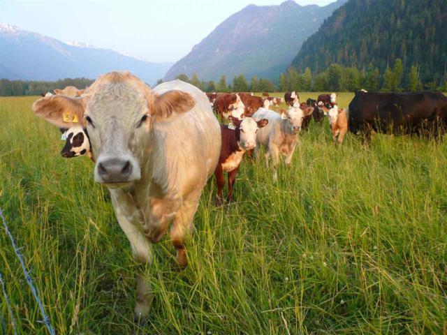 9651 Pemberton Meadows, Pemberton, BC V0N 2L0 (#R2301232) :: Vancouver House Finders