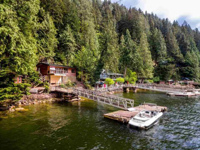 29 Johnson Bay, North Vancouver, BC V0V 0V0 (#R2301245) :: TeamW Realty