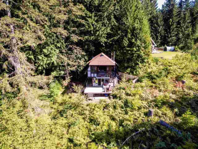 1164 Garibaldi Park Road, Squamish, BC V0N 1T0 (#R2302533) :: Vancouver Real Estate