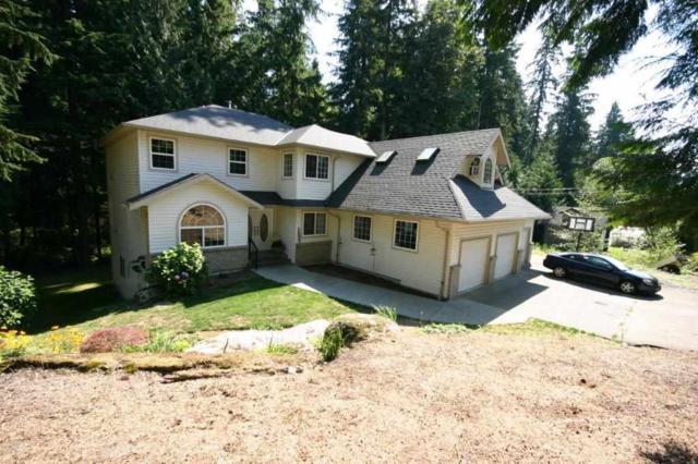 12348 271ST Street, Maple Ridge, BC V2W 1C2 (#R2302862) :: West One Real Estate Team