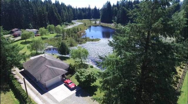 11188 284 Street, Maple Ridge, BC V2W 1L8 (#R2303157) :: JO Homes | RE/MAX Blueprint Realty