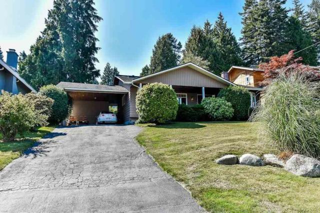 5090 Wilson Drive, Delta, BC V4M 1P4 (#R2304034) :: JO Homes   RE/MAX Blueprint Realty