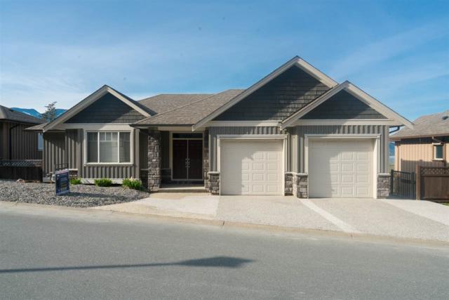 43668 Alameda Drive, Chilliwack, BC V2R 0J9 (#R2304323) :: JO Homes   RE/MAX Blueprint Realty