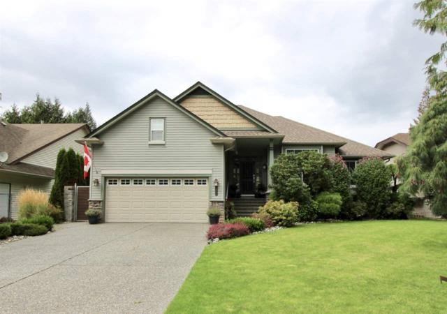 527 Driftwood Avenue, Harrison Hot Springs, BC V0M 1K0 (#R2304518) :: Vancouver House Finders