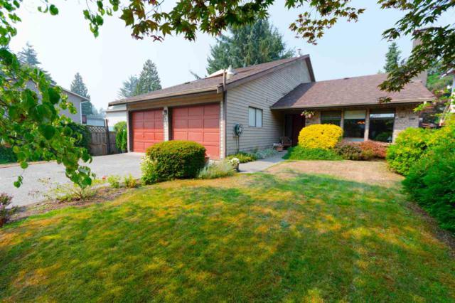 2433 Chilcott Avenue, Port Coquitlam, BC V3B 1Y4 (#R2305174) :: Vancouver Real Estate