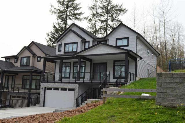 11195 Creekside Street, Maple Ridge, BC V2W 0E8 (#R2305568) :: JO Homes | RE/MAX Blueprint Realty
