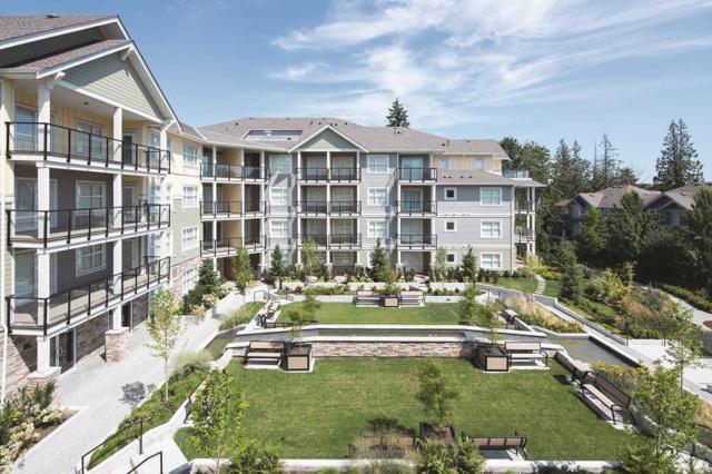 5020 221A Street #217, Langley, BC V2Y 0V5 (#R2305600) :: West One Real Estate Team
