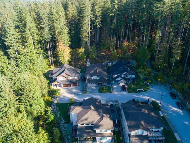 13511 240 Street #4, Maple Ridge, BC V4R 0A4 (#R2306431) :: JO Homes | RE/MAX Blueprint Realty