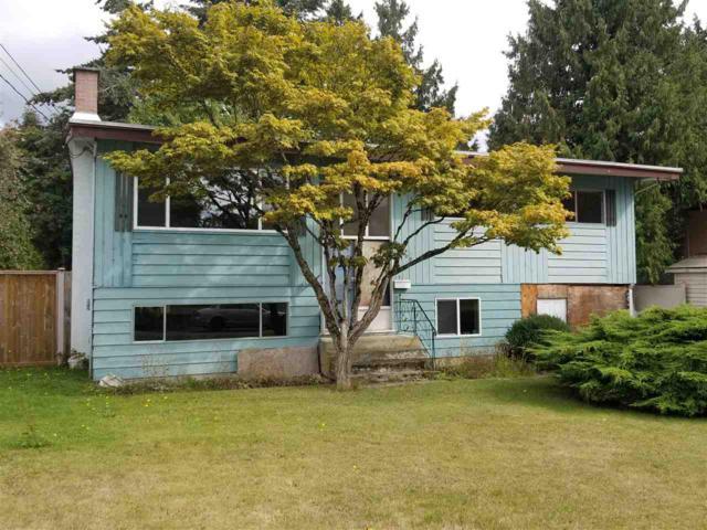 10100 127B Street, Surrey, BC V3V 5M3 (#R2306616) :: Vancouver House Finders