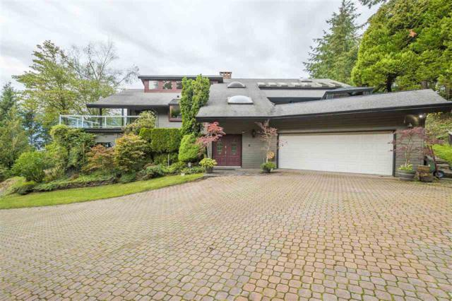 43250 Old Orchard Road, Chilliwack, BC V2R 4A6 (#R2306953) :: JO Homes   RE/MAX Blueprint Realty