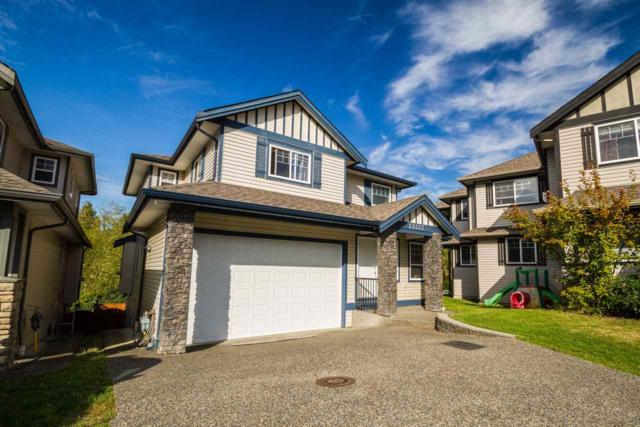 23555 112B Avenue, Maple Ridge, BC V2W 1W7 (#R2307010) :: JO Homes | RE/MAX Blueprint Realty