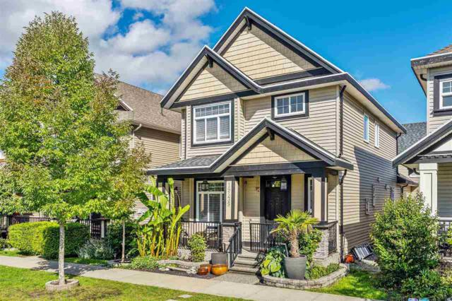 19539 71A Avenue, Surrey, BC V4N 5Z5 (#R2307281) :: West One Real Estate Team