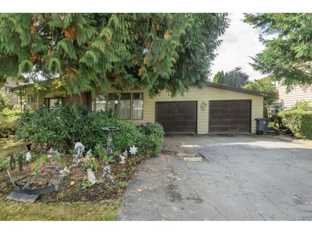 13874 Falkirk Drive, Surrey, BC V3V 6M2 (#R2307470) :: Vancouver House Finders