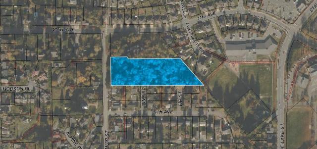 7784 Dunsmuir Street, Mission, BC V2V 4B8 (#R2308035) :: West One Real Estate Team