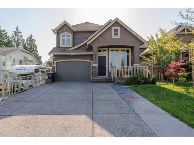 3254 272B Street, Langley, BC V4W 3H8 (#R2308209) :: JO Homes | RE/MAX Blueprint Realty