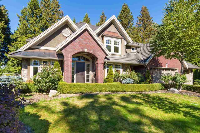 3376 145 Street, Surrey, BC V4P 3N6 (#R2308531) :: JO Homes | RE/MAX Blueprint Realty