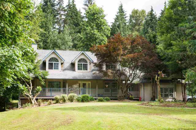 24150 132 Avenue, Maple Ridge, BC V4R 2R7 (#R2308759) :: JO Homes | RE/MAX Blueprint Realty
