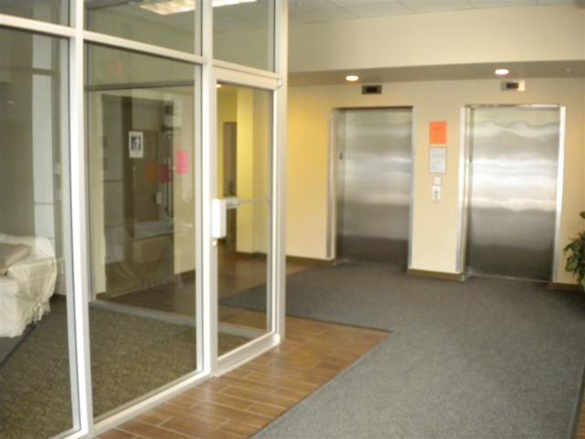 2239 Kingsway #327, Vancouver, BC V5N 0E5 (#R2308849) :: JO Homes | RE/MAX Blueprint Realty