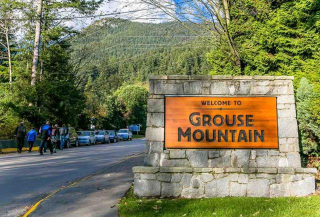 5719 Owl Court, North Vancouver, BC V7R 4V1 (#R2308918) :: Vancouver Real Estate