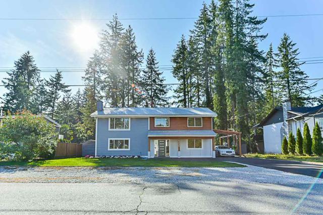 4155 204B Street, Langley, BC V3A 1Z7 (#R2308945) :: JO Homes | RE/MAX Blueprint Realty