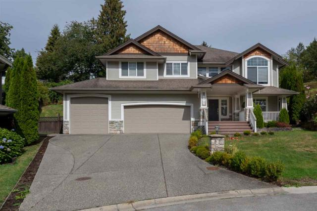 22785 Holyrood Avenue, Maple Ridge, BC V2X 6E7 (#R2309018) :: JO Homes | RE/MAX Blueprint Realty