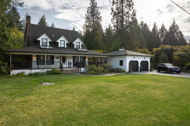21004 43 Avenue, Langley, BC V3A 5X5 (#R2309043) :: JO Homes | RE/MAX Blueprint Realty