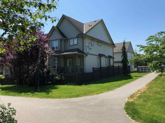 6696 195 Street, Surrey, BC V4N 5T4 (#R2309076) :: Homes Fraser Valley