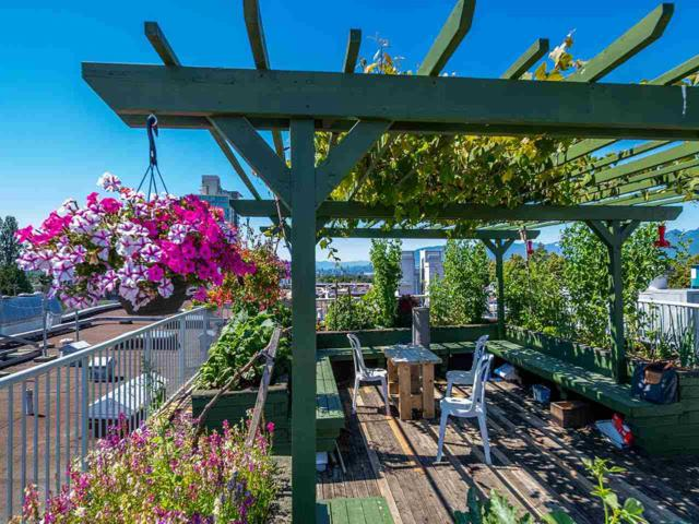4893 Clarendon Street #202, Vancouver, BC V5R 3J3 (#R2309205) :: Vancouver House Finders