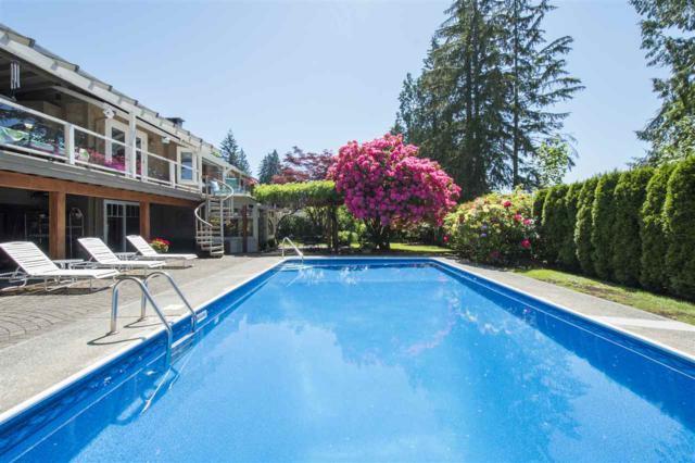 4787 Cedarcrest Avenue, North Vancouver, BC V7R 3R4 (#R2309561) :: Vancouver House Finders