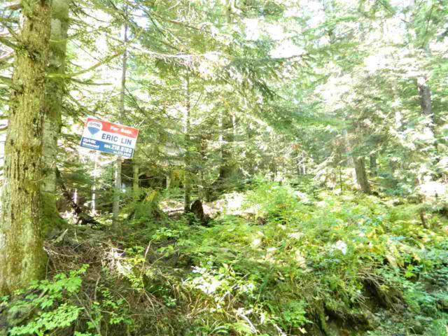 1133 Hollyburn Mtn Terrace Dl, West Vancouver, BC V0V 0V0 (#R2310112) :: TeamW Realty