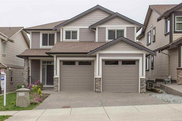 13375 236 Street, Maple Ridge, BC V4R 0E4 (#R2310796) :: TeamW Realty