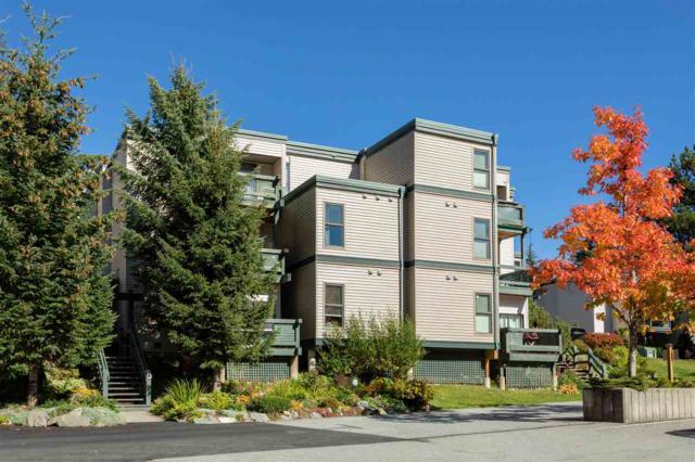 1400 Alta Lake Road D204, Whistler, BC V0N 1B1 (#R2311511) :: TeamW Realty