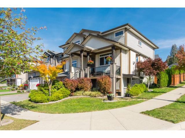 13752 232A Street, Maple Ridge, BC V4R 0C2 (#R2311649) :: TeamW Realty